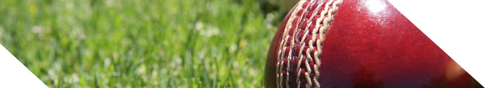 cricket netting suppliers   cricket netting for sale   indoor cricket netting