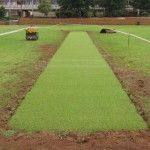 Oval-Pitch-synthetic pitch artificial pitch synthetic cricket pitch cricket astroturf cricket pitch matting