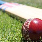 cricket nets - cricket ball machine - cricket ball thrower- cricket ball machine for sale